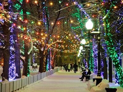 Неменее 30 бесплатных экскурсии проведут врамках «Путешествия вРождество»