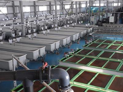 ВСамарской области открылся завод повоспроизводству рыбы