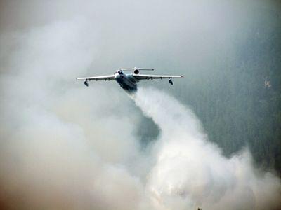 На далеком Востоке засутки огонь оцепил 6,8 тыс. гектаров леса