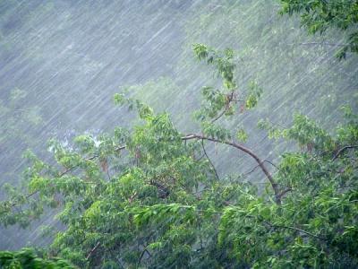 Вода начала уходить вчетырёх из 5-ти подтопленных муниципалитетах Приморья