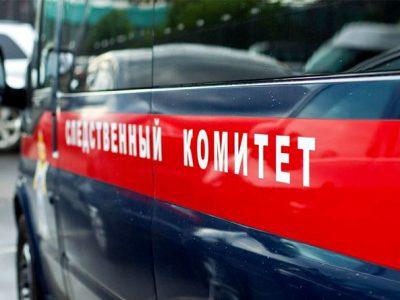 СКР: дело возбуждено из-за погибели 2-х детей при пожаре вПетербурге