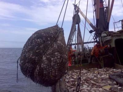 Русские рыболовы побили рекорд повылову