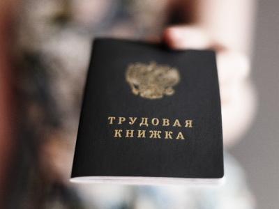 Больше половины граждан России выступают завведение электронных трудовых книжек