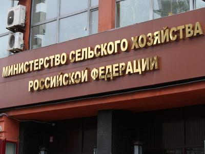 Минсельхоз рассчитывает, что к 2025-ому году экспорт русской продукции достигнет $30 млрд