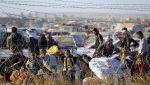 Турция зафиксировала 15 тысяч сирийских беженцев у своей границы