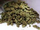 Ростовские полицейские выявили факты незаконного хранения наркотических средств в крупном размере