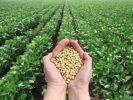Минсельхоз подвел итоги еженедельного мониторинга ситуации на агропродовольственном рынке