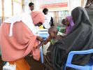 Ghana, Kenya and Malawi to pilot malaria vaccine trial – UN