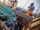 Приморские рыбаки с начала года выловили более 440 тыс. водных биоресурсов