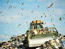 В ФАО обсудили проблему загрязнения почвы
