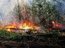 В Иркутской области ликвидировано 27 лесных пожаров
