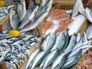 За первое полугодие производство рыбной продукции в России выросло на 4,3% – до 2,65 млн тонн