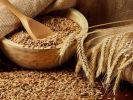 Экспортные цены на российскую пшеницу показали рост впервые за два месяца