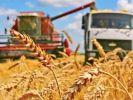 В Башкирии собрано более 3,3 млн тонн зерна
