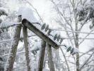 В Сибири произошли массовые нарушения электроснабжения потребителей