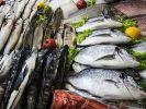 Рыба из Якутии произвела фурор на Дальневосточной ярмарке в Москве