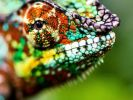 Chameleon-like material could unleash more powerful computers