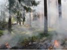 Огонь горы Буффало в Сильверторне растёт до 91 акра