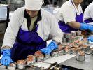 Роскачество выявило подмену рыбы в некоторых консервах