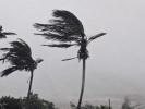 "Ураган ""Майкл"" обесточил 240 000 домов"