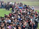 Полиция Боснии остановила прорыв мигрантов на границе с Хорватией