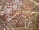 Гигантские рисунки на плато Наска - для чего они? Отвечают канадские археологи