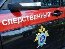 Полицейского убили в Подмосковье – СК рассказал подробности