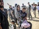 В Сирию за сутки вернулась почти тысяча беженцев