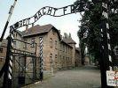 Туриста из США арестовали за попытку украсть кусок рельса из музея Освенцима