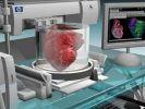 Израильские учёные первыми в мире напечатали живое сердце на 3D-принтере