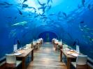 В Италии откроют первый ресторан под водой