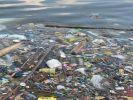 В США отказались поддержать экологическую инициативу ООН
