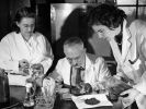 Штат Нью-Джерси получил свой официальный микроб благодаря российскому учёному