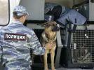 Сегодня профессиональный праздник у работников охранно-конвойной службы