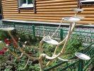 В Москве установят кормушки для бабочек