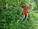 У россиян будут забирать земельные участки за мусор и сорняки
