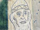 К приезду Путина в Италии трактором на поле нарисовали портрет князя Владимира