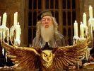По истории про Гарри Поттера снимут сериал