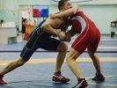В Сочи прошёл чемпионат России по вольной борьбе.