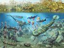 Учёные раскрыли ещё одну загадку эволюционного развития жизни на Земле