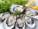 Oyster Production and Consumption Rose Sharply in Russia