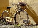В Google Maps станет доступна функция поиска велосипедов