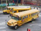 В ДТП с двумя школьными автобусами в Канаде пострадали около 70 человек