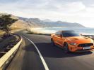 Ford выпустил свой юбилейный Mustang