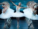 The Planet Ballet Festival Will Be Held in Moscow for the First Time
