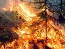 Дым от сибирских пожаров достиг Поволжья