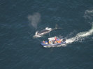 Two Out of Three Polar Whales Entangled in the Fishnet were Rescued in Canada