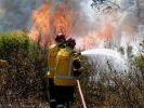Лесные пожары начались во Франции