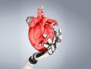 Создано искусственное сердце для тестирования лекарств