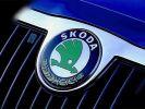 Фирменный голосовой помощник появится в автомобилях Skoda